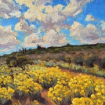 """Artist 13 - Chamisa Bloom • <a style=""""font-size:0.8em;"""" href=""""http://www.flickr.com/photos/87092804@N03/32220251912/"""" target=""""_blank"""">View on Flickr</a>"""